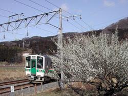 Dscn3165