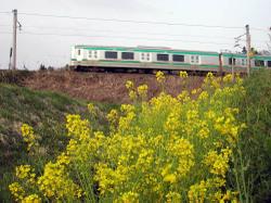 Dscn5920