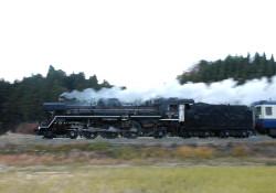 Dsc_4655