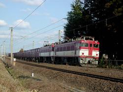 Dscn5243