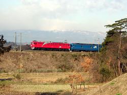 Dscn5390